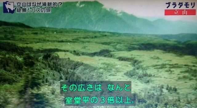 f:id:morifumikirikita319:20171022144042j:image