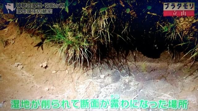 f:id:morifumikirikita319:20171022150851j:image