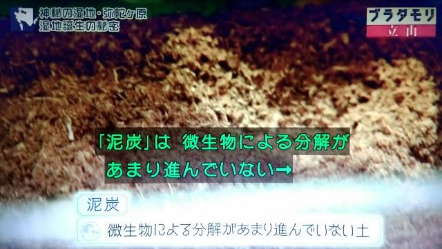 f:id:morifumikirikita319:20171022150924j:image