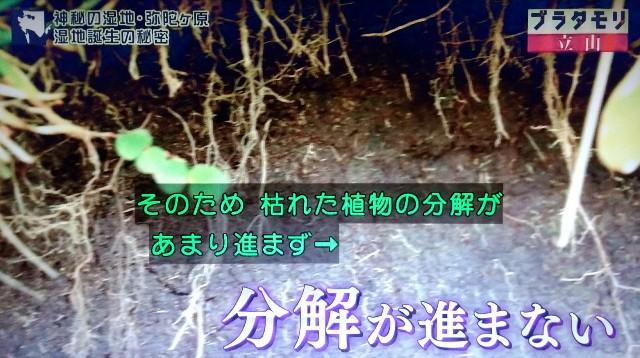 f:id:morifumikirikita319:20171022155138j:image