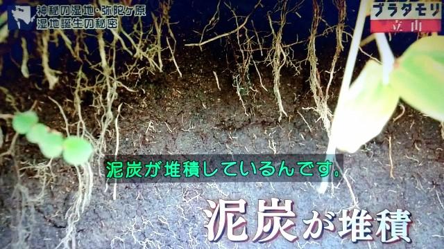 f:id:morifumikirikita319:20171022155152j:image