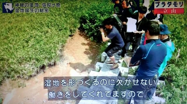f:id:morifumikirikita319:20171022155222j:image