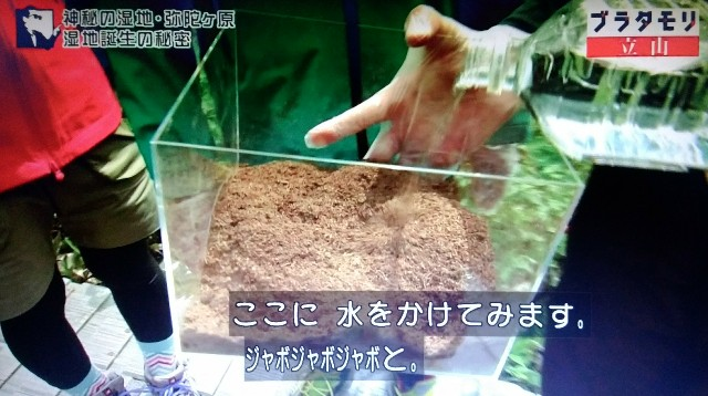 f:id:morifumikirikita319:20171022155235j:image