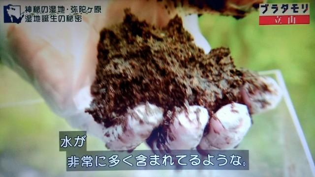f:id:morifumikirikita319:20171022155253j:image