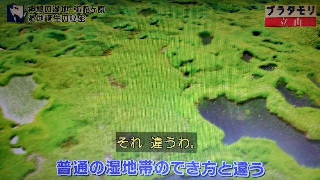 f:id:morifumikirikita319:20171022155347j:image
