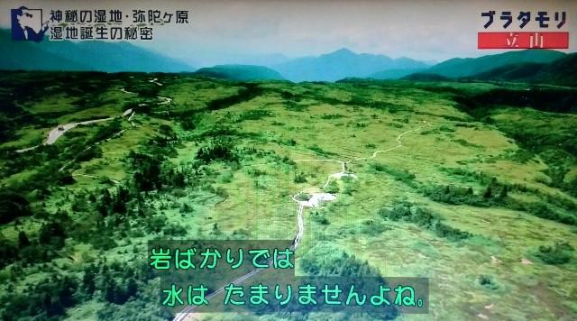 f:id:morifumikirikita319:20171023135520j:image