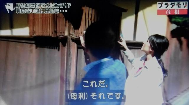f:id:morifumikirikita319:20171210184042j:image