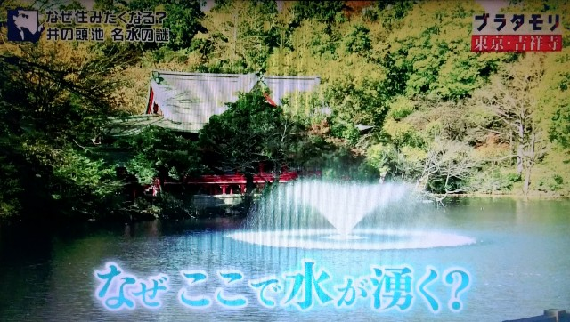 f:id:morifumikirikita319:20171224062917j:image