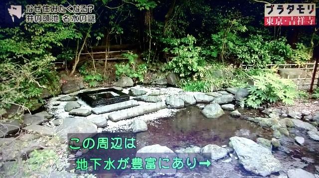 f:id:morifumikirikita319:20171224064449j:image