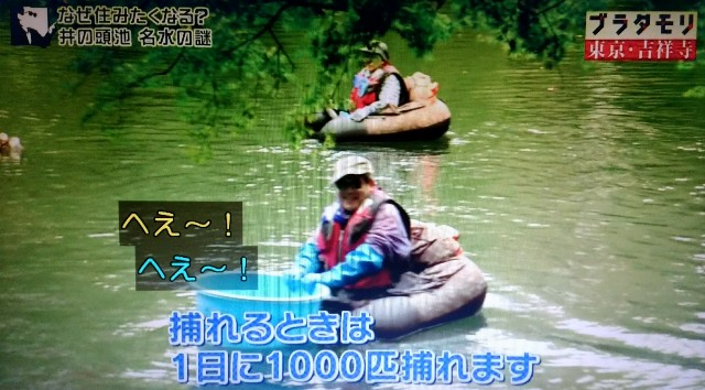 f:id:morifumikirikita319:20171224083653j:image