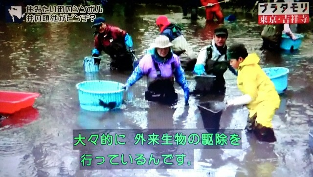 f:id:morifumikirikita319:20171224083859j:image