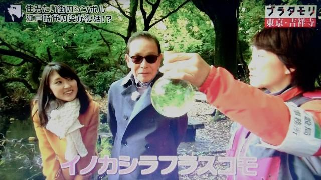 f:id:morifumikirikita319:20171224085045j:image