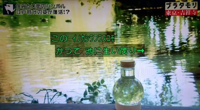 f:id:morifumikirikita319:20171224090144j:image
