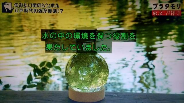f:id:morifumikirikita319:20171224090206j:image
