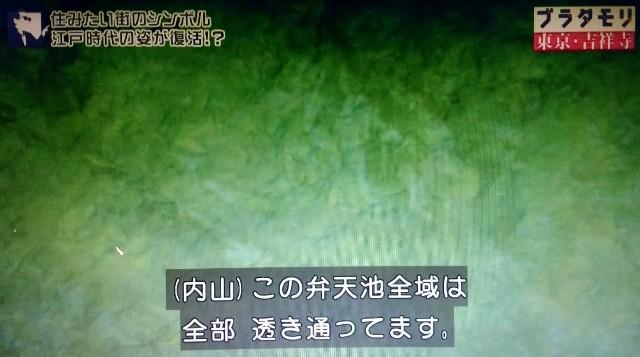 f:id:morifumikirikita319:20171224090241j:image