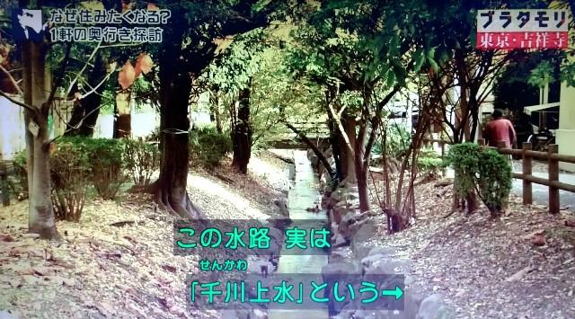 f:id:morifumikirikita319:20171224160124j:image