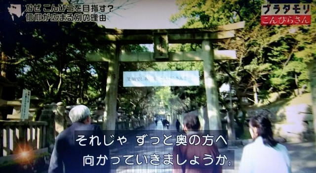 f:id:morifumikirikita319:20180103172720j:image