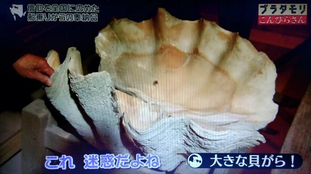 f:id:morifumikirikita319:20180103183142j:image