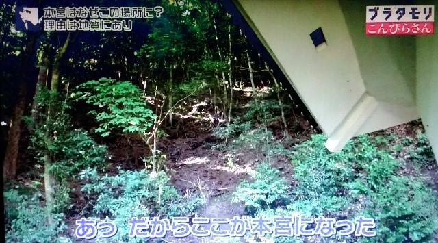 f:id:morifumikirikita319:20180103225643j:image