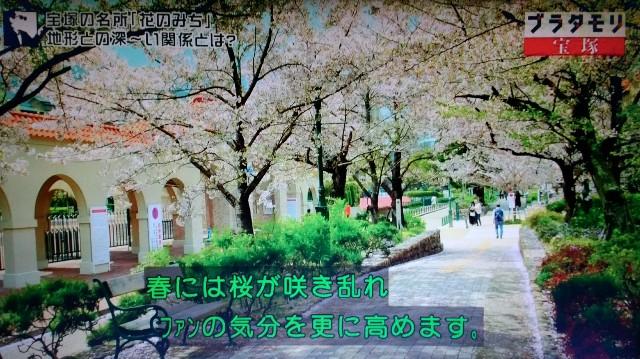 f:id:morifumikirikita319:20180114205452j:image