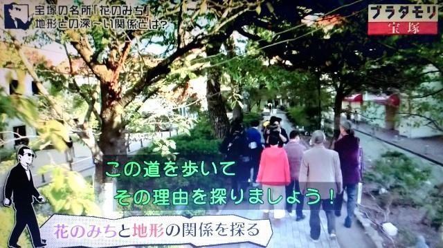 f:id:morifumikirikita319:20180114210433j:image