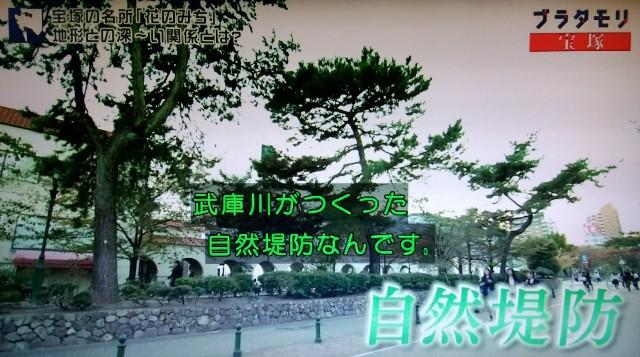 f:id:morifumikirikita319:20180114210531j:image
