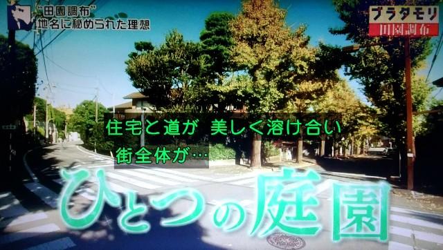 f:id:morifumikirikita319:20180121132130j:image