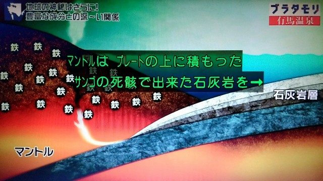 f:id:morifumikirikita319:20180204135553j:image