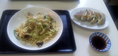 東武スカイツリーラインのせんげん台駅近くの埼玉県越谷市平方にある中華料理店宝華の肉野菜炒めと餃子