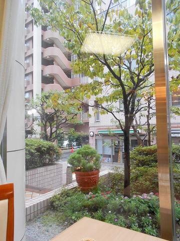 千葉県市川市市川1丁目にあるカフェ「Cafe de Riviere リヴィエール」店からの眺め