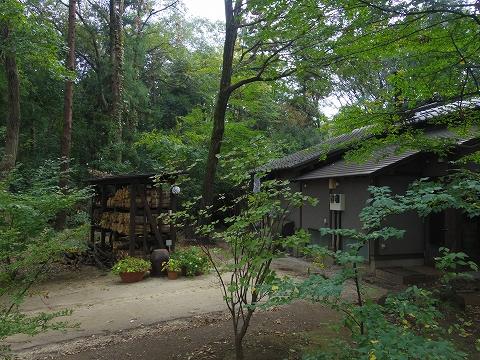 埼玉県所沢市若狭にあるイタリア料理のお店「PIZZERIA 武蔵野山居」庭園