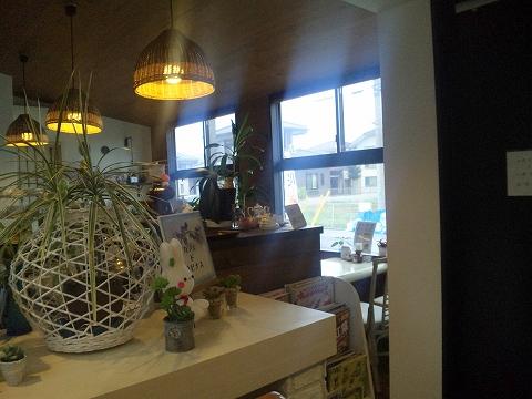 埼玉県春日部市備後東6丁目にあるカフェ「Cafe de Lupinus カフェ ド ルピナス」店内