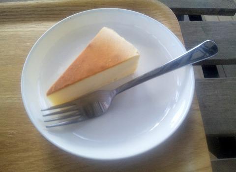 埼玉県所沢市北野1丁目にあるカフェ「ツリーハウスカフェ nicorico」チーズケーキ