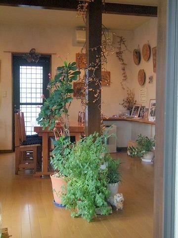 長野県上田市別所温泉にある喫茶店「風乃坂道」店内
