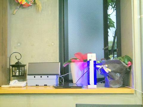 神奈川県横浜市中区本牧宮原にある餃子専門店「横浜天晴生餃子 本牧店」店内