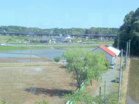 千葉県成田市松崎にあるカフェ「木のぬくもりカフェ丘の上珈琲」店内からの眺め