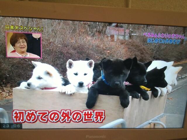 f:id:morihirohate:20170308170726j:image
