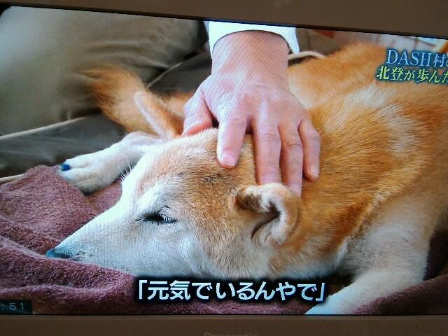 f:id:morihirohate:20170326215416j:image