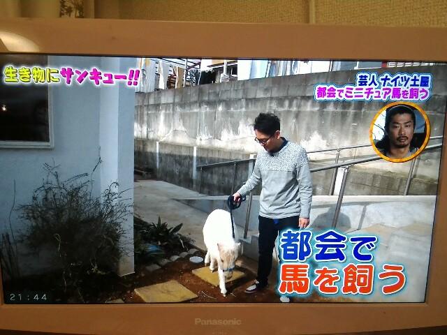 f:id:morihirohate:20170401214630j:image