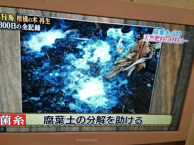 f:id:morihirohate:20170416211007j:image
