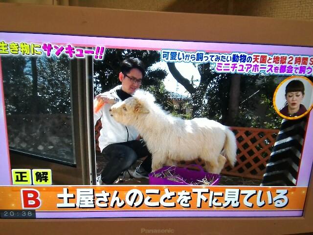 f:id:morihirohate:20170427204429j:image