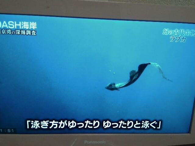 f:id:morihirohate:20170514215517j:image