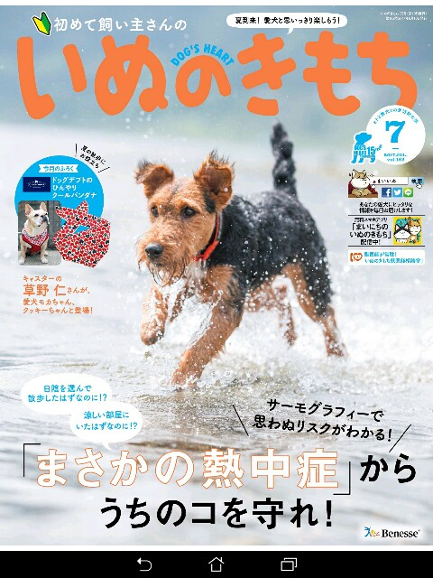 f:id:morihirohate:20170626132027j:image
