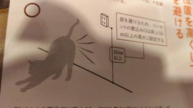 f:id:morihirohate:20170804002310j:image