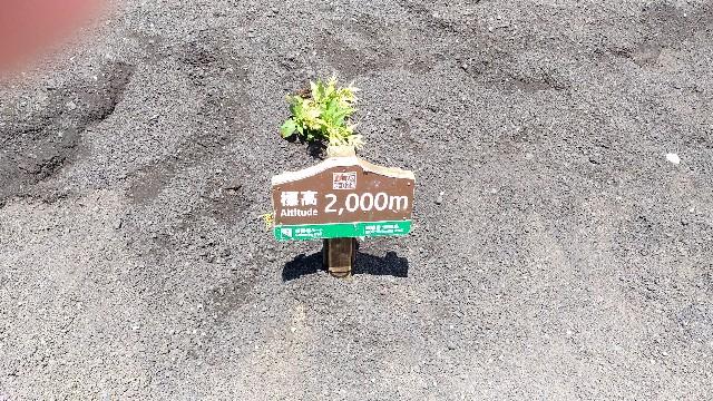 f:id:morihirohate:20171022144600j:image