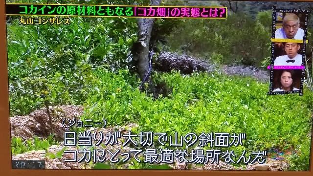 f:id:morihirohate:20180405202402j:image