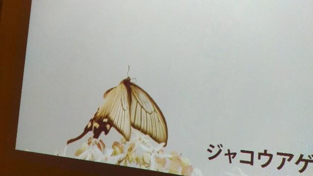 f:id:morihirohate:20180923164555j:image