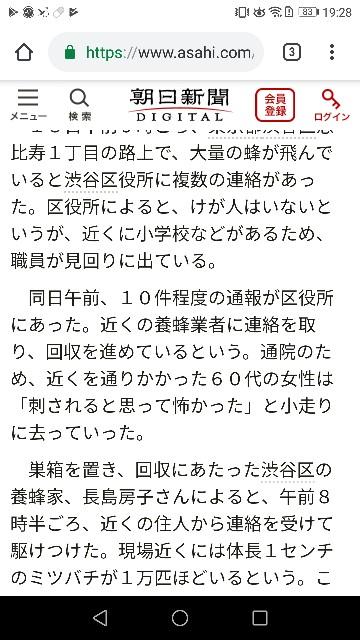 f:id:morihirohate:20190420110004j:image