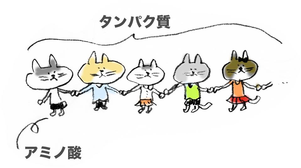f:id:morika-wa:20200319030410p:plain
