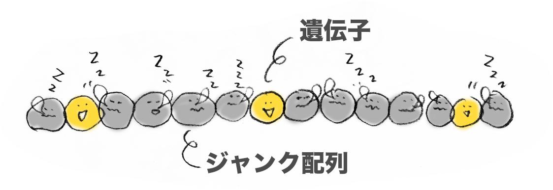 f:id:morika-wa:20200319031220p:plain